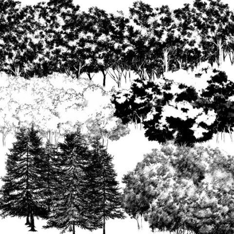 森ブラシ5種_サムネ