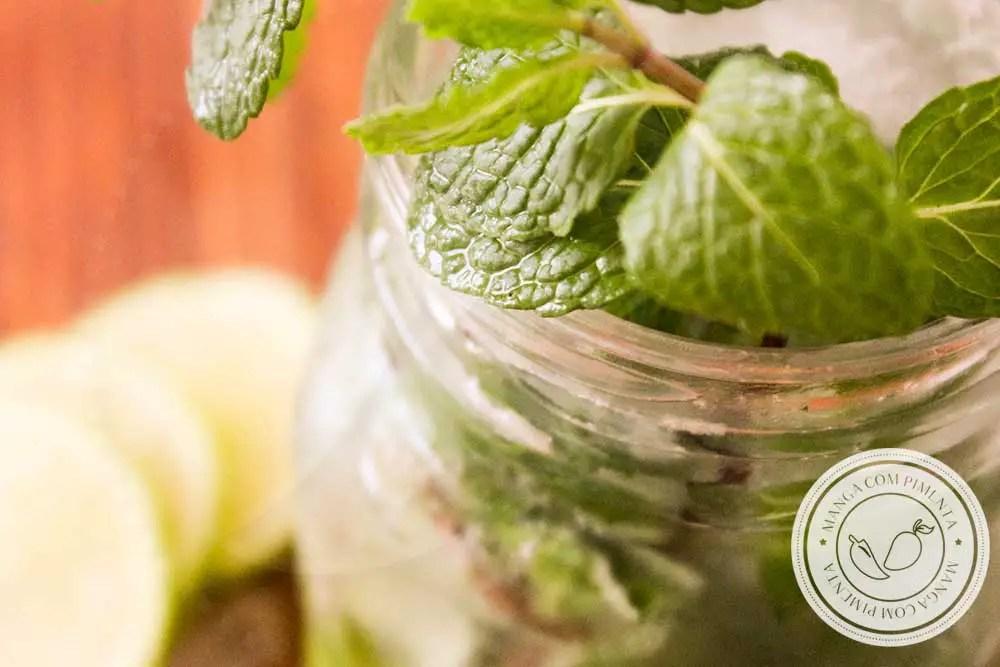 Receita de Mojito Sem Álcool - uma bebida deliciosa para fazer em casa e em qualquer hora do dia!