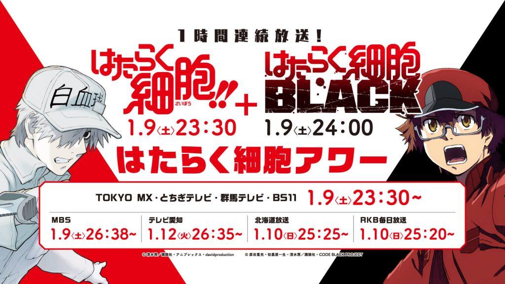 Season 2 Hataraku Saibou & BLACK Ungkap Detail Penayangan