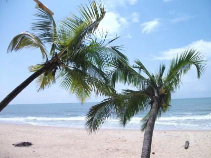 Padubidri-Beach1