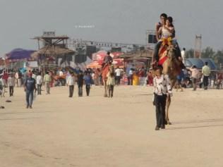Panambur_beach-12