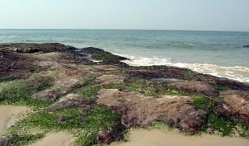 Someshwara-beach-Ullal5