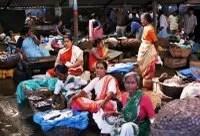 Fish Market in Hampanakatta, Mangalore