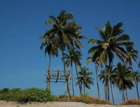 Thanner Bavi Beach Mangalore