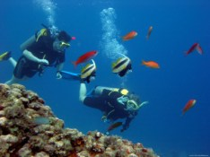 scuba-diving-udupi-3