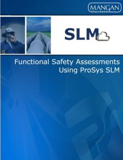 Functional Safety Assessments Whitepaper