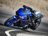 2019-Yamaha-YZF-R3