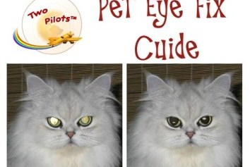 Pet Eye Fix Guide – Tinh chỉnh màu mắt cho ảnh thú cưng