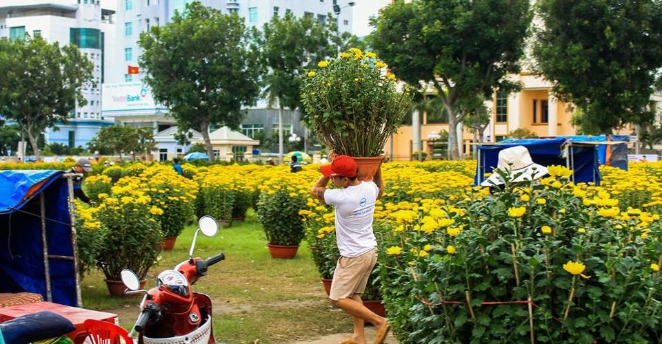 Chợ hoa Quy Nhơn chiều 28 tết Bính Thân 2016