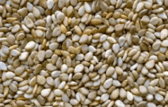 graines de Sésame