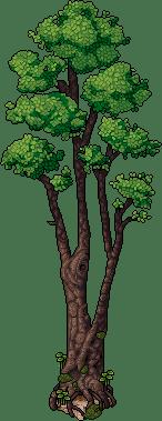 dino_c15_tree1_64_0_0