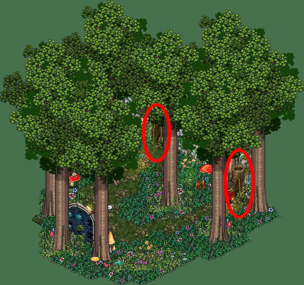[HGS] P2 La forêt