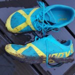 Test : inov8 Terraclaw 220