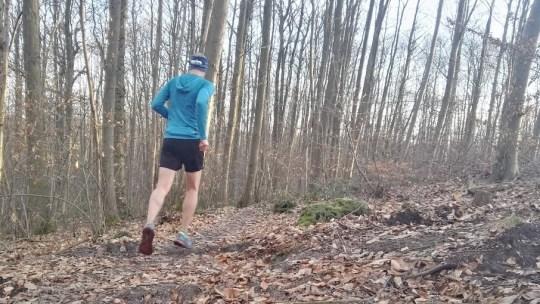 Plan d'entrainement trail roulant : ecotrail 80km
