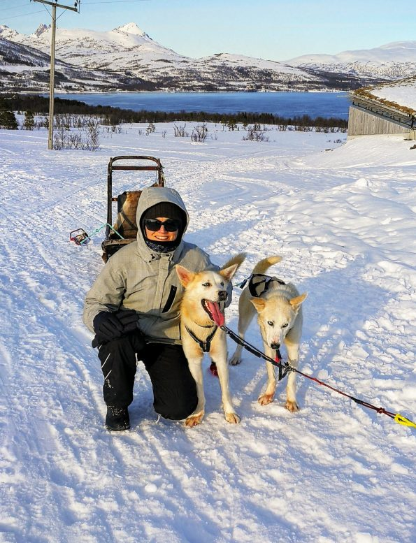 Villmarkssenter dog sledding