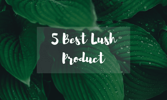 Top Lush Product 2017