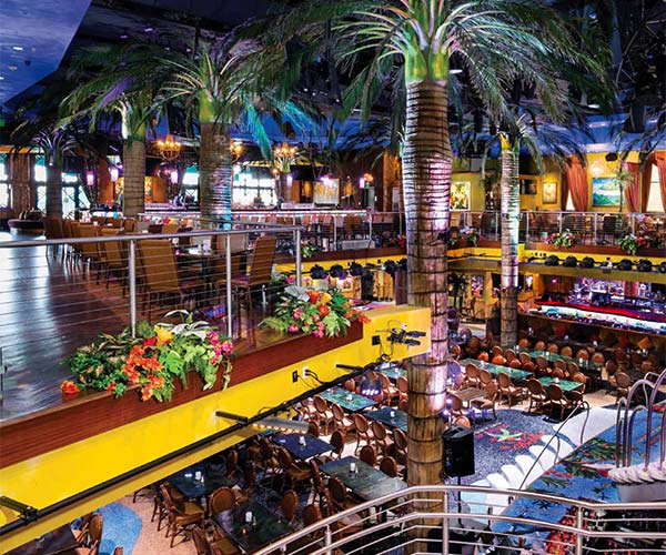 Celebrate Your Party In Orlando At Mango S Mangos Tropical Cafe