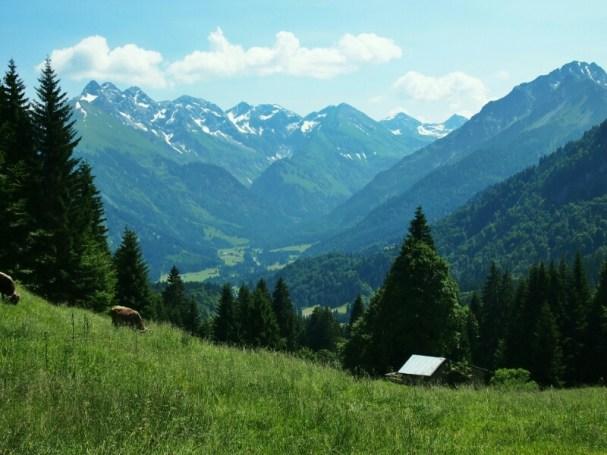 Bergblick am Söllereck
