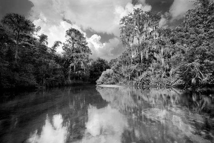 Mangrove Equity News Upates