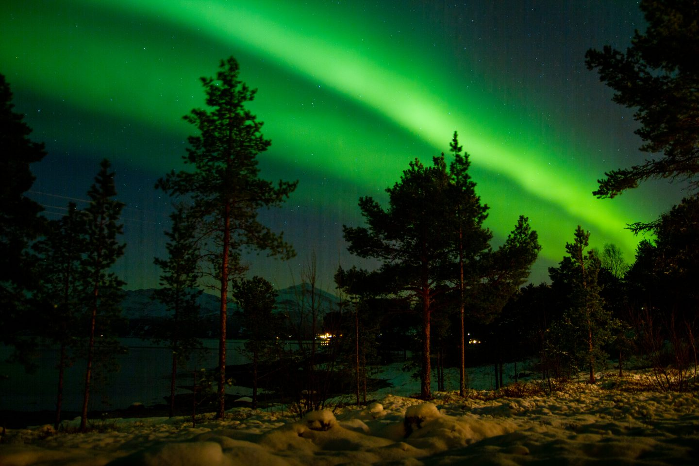 Aurora Borealis in Hamarøy, northern Norway. How to find & photograph the northern lights