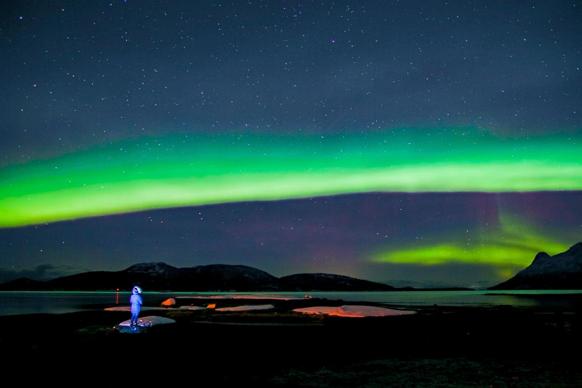 Nordlys på Hamarøy i Nordland
