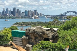 The perfect weekend getaway in Sydney is to the Taronga Zoo that has beautiful views of the skyline.