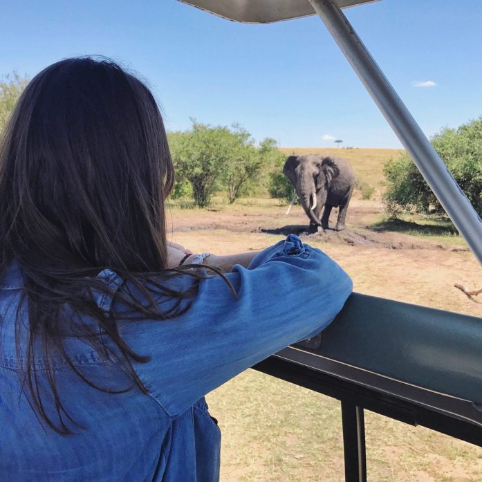 Who doesn't want to get up close and personal with elephants? Well you can if you book a safari!