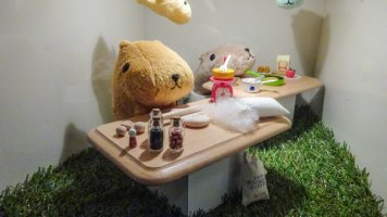 kapibarasan-cafe-10th-anniv-sign-gaienmae[4]