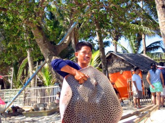 guide holding up 20 kilo spotted eagle ray