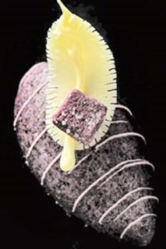 squid polvoron