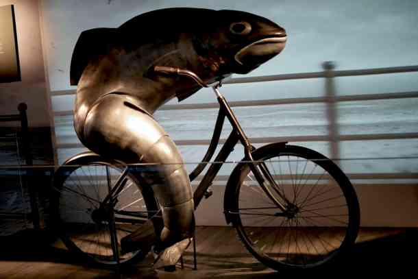 Guinness Experience fish drive the bike. maninio.com #guinnessexperience #guinnessireland