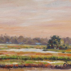 Marsh Spring