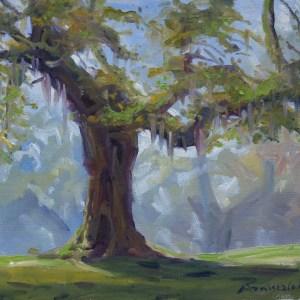 Dawn Oak Charleston