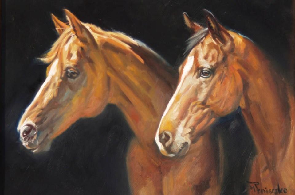 Equestrian Challenge