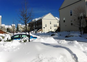 Snowdrifts Everywhere