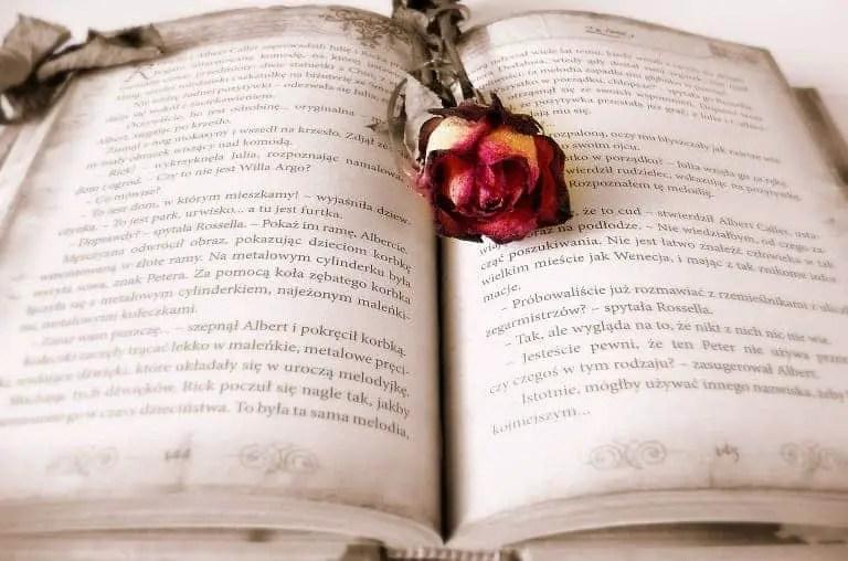 Memahami Rima Dalam Puisi Secara Mudah