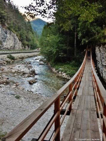 A truly wobbly bridge over the Savinja river.
