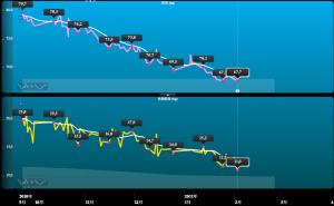 体重計グラフ