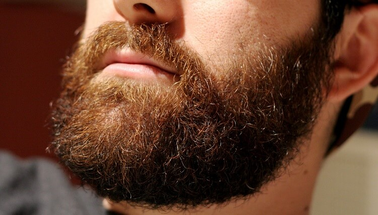 How to groomg a beard while growing a full beard