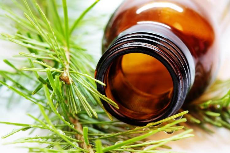 The type of natural ingredients that you want in your personal care products (1)