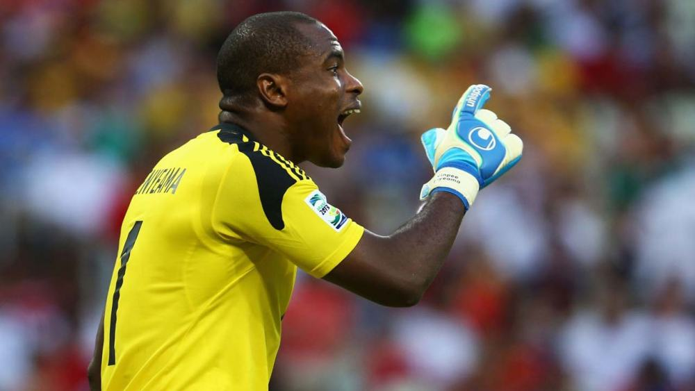 Top Nigerian Football Superstars and Their Net Worth Vincent Enyeama