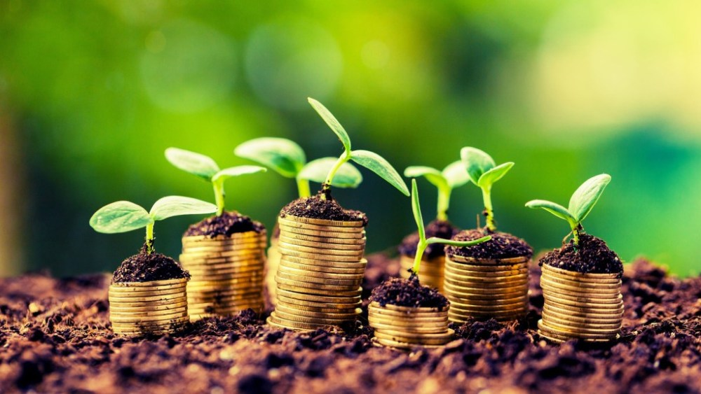 money growing because of savings account interest rate