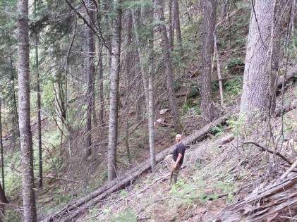 steep-elk-hunting
