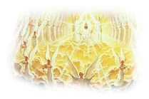 The angels of heaven will be on the side of God's people in earth's final battle.