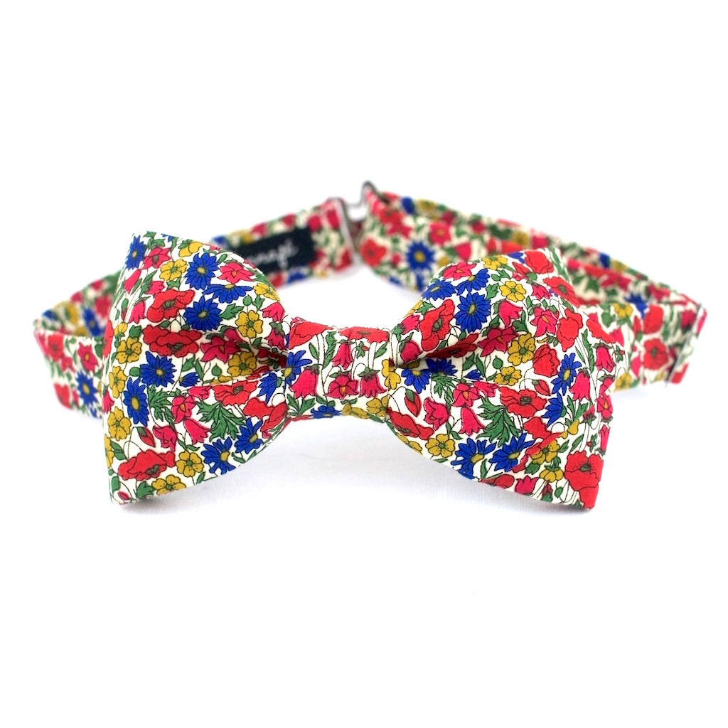 Noeud papillon Liberty Peal and Bud multicolore