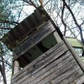 Raised stand in a wood, Styria