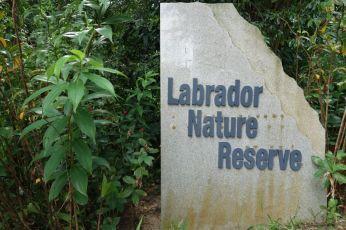 Labrador Nature Reserve – 12