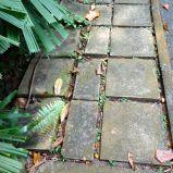 Old paving stones, Singapore