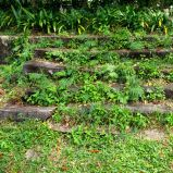 stairs&steps – 06
