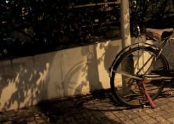 Penang, Bike